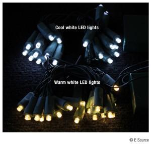 cool vs warm white